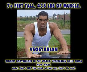 3000 Calorie Vegetarian