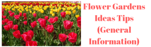 Flower Gardens Ideas