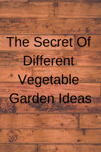 The Secret Of Different Vegetable Garden Ideas