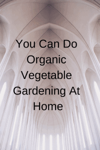 You Can Do Organic Vegetable Gardening