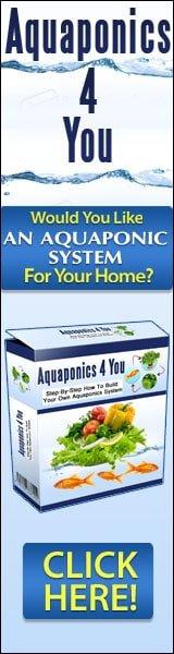 Aquaphonics Growing